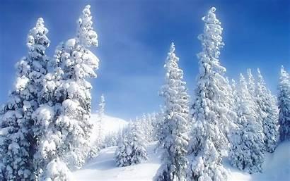 Winter Scenes Desktop
