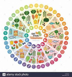 Vitamin Food Sources And Functions  Rainbow Wheel Chart