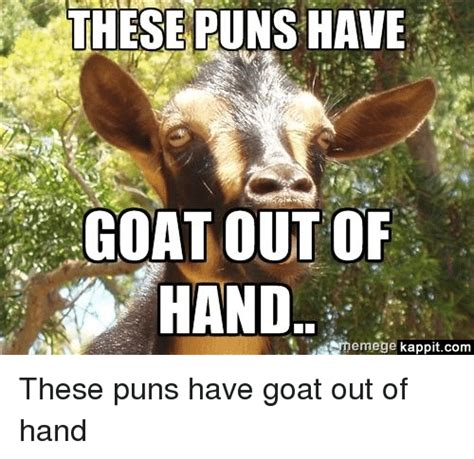 Whatever Floats Your Boat Puns by 25 Best Memes About Punny And Goat Punny And Goat Memes