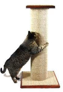 best cat scratching post cat scratching posts and maine coon cats purrfectpost