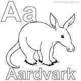 Coloring Aardvark sketch template