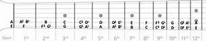 Jazz Guitar Chord Chart Songmaven
