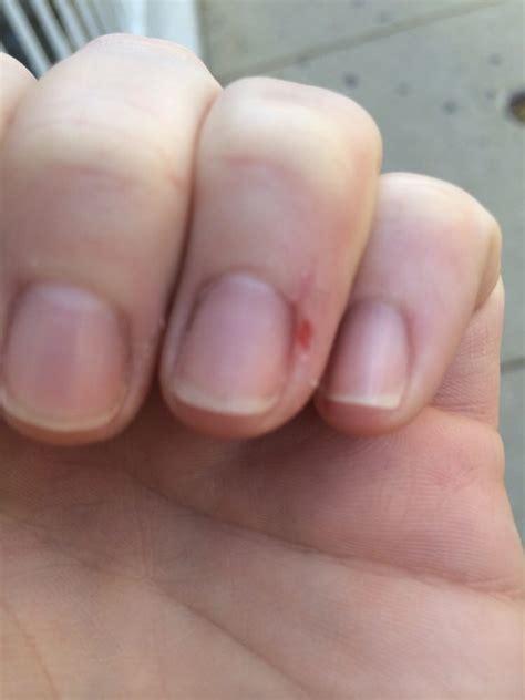 pink polish nail salon nail salons  north side