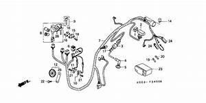 Wire Harness For 2001 Honda Sh100