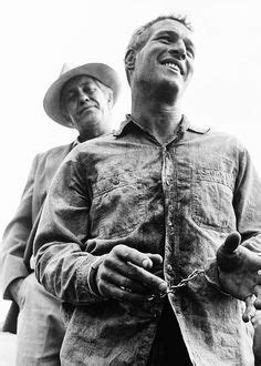 paul newman veteran 1000 images about cool hand luke on pinterest classic