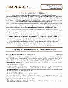 non profit executive resume With non profit program director resume sample