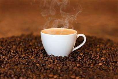 Coffee Cold Brew Study Antioxidants Differences Fundamental