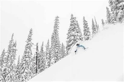 Powder Snow Safari Triangle Ski Canada Weeks