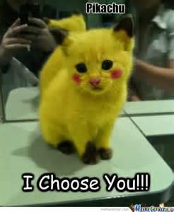 I Choose You Meme