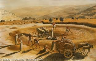 define biblical threshing floor araunah s threshing floor ferrell s travel