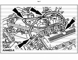 Search Results 1999 5 4 Triton V8 Diagram Html