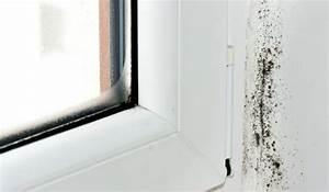 Fenster Von Innen Beschlagen Was Tun : fenster beschlagen von innen kondenswasser vermeiden ~ Markanthonyermac.com Haus und Dekorationen