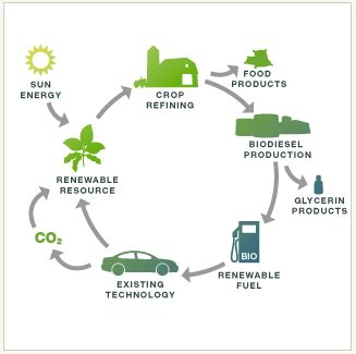 Biofuel Engine Diagram by What Is Biodiesel Collaborative Biodiesel Project