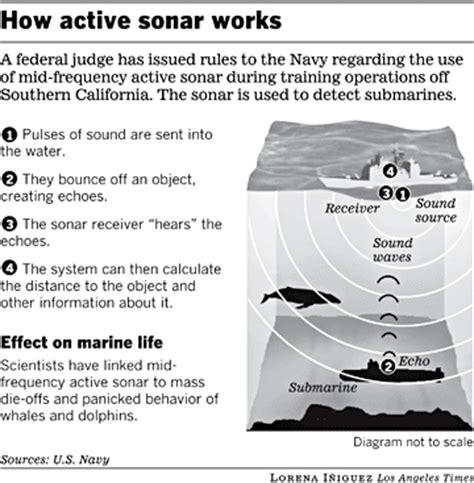 How Active Sonar Works  La Times
