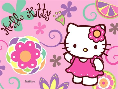 kitty hd backgrounds wallpapers images