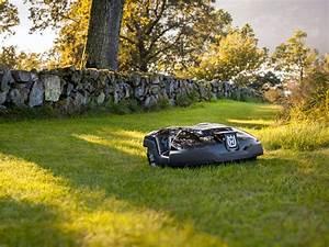 Durée De Vie D Un Moucheron : quelle dur e de vie pour un robot tondeuse ~ Farleysfitness.com Idées de Décoration