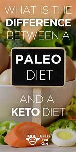 Ketogenic Diet Vs  Paleo Diet  How They Differ