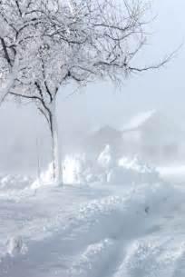 Winter Snow Blizzard