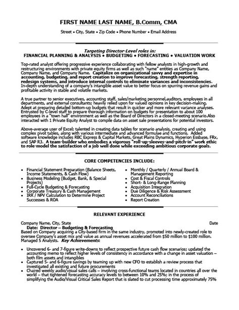 director of finance resume template premium resume