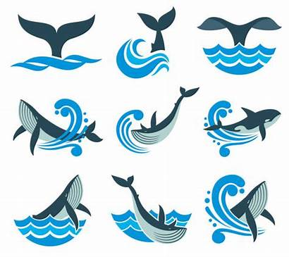 Whale Water Vector Sea Icons Waves Wild