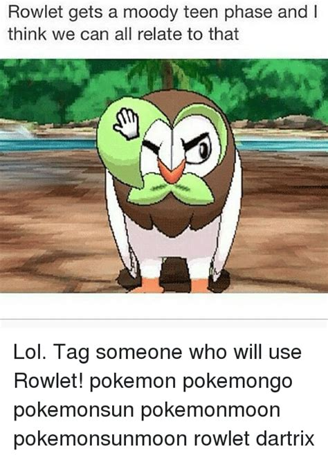Rowlet Memes - rowlet gets a moody teen phase and l think we can all relate to that lol tag someone who will
