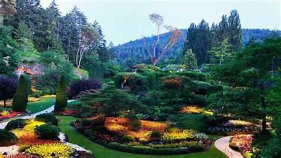 1080p Nature Landscape Pixelstalk Field