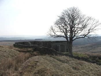 Wuthering Heights: Summary, Setting & Themes   Study.com