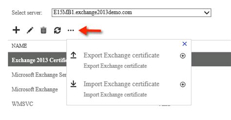 100 wildcard certificate for exchange 2013 ssl