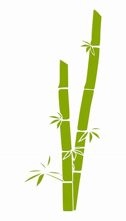 Bamboo Silhouette Clipart Transparent Webstockreview