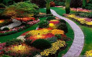 Beautiful Garden With Flowers Flowers
