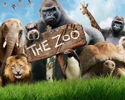 zoo  national tv paignton zoo news