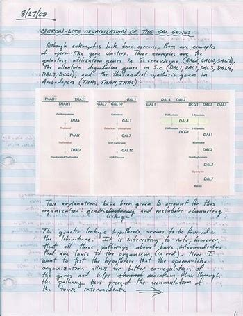 laboratory notebook types  practices
