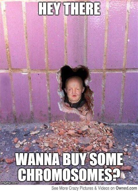 Humor Memes - best dark humor memes image memes at relatably com