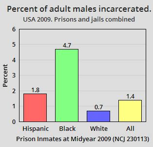 statistics bureau usa race and crime in the united states