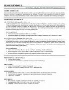 Big Accounting Professional Resume And Every Accounting Big Accounting Click To View A Larger Version Images Frompo Look Into The Big 4 Accounting Firms Big 4 Bound Big 4 Bound Sample Internal Audit Executive Resume Sample Resumes Big Audit