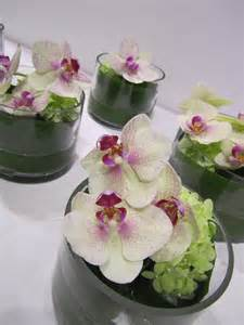 moth orchid file phalaenopsis orchid floral arrangement jpg