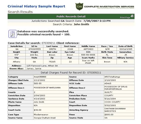 Check Criminal History Records What Does A Sle Results
