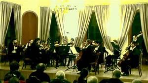 Anima Musicae Chamber Orchestra - Tchaikovsky Serenade for ...