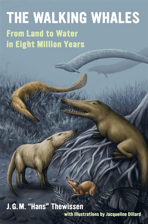 walking whales     hans thewissen hardcover