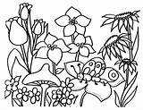 Coloring Flowers Flower Pages Printable Floral Garden Printing Printables Adult sketch template