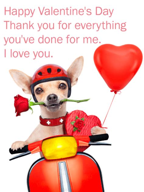 romantic chihuahua happy valentines day card birthday