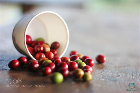 Browse and purchase green (unroasted) coffee beans, roasting, grinding and espresso machines, and accessories online. Coffee Beans (kewal somani / kolkata / india) #Canon EOS ...