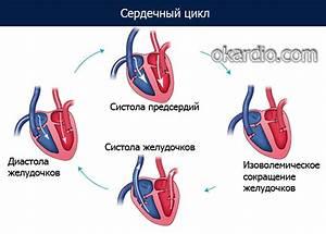 Что полезно при гипертонии а что нет