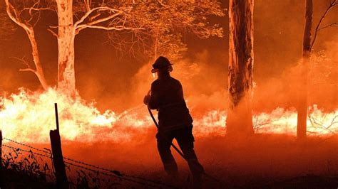 support  australian wildfires relief effort