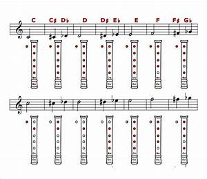 Recorder Finger Chart Sample