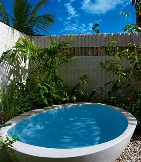 sichtschutz whirlpool wanne garten palmen einrichten