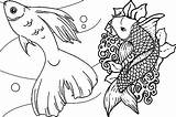 Fish Coloring Pages Printable Colouring Adults Adult Detailed Rainbow Tank Cute Realistic Fishes Print Real Koi Educative Getcolorings Getdrawings Colorings sketch template