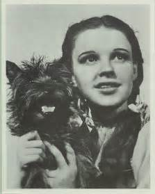 Judy Garland Wizard of Oz Toto