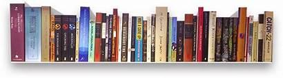 Books Library Children Kid Bookshelf Bilingual Age