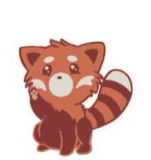 red panda gifs tenor